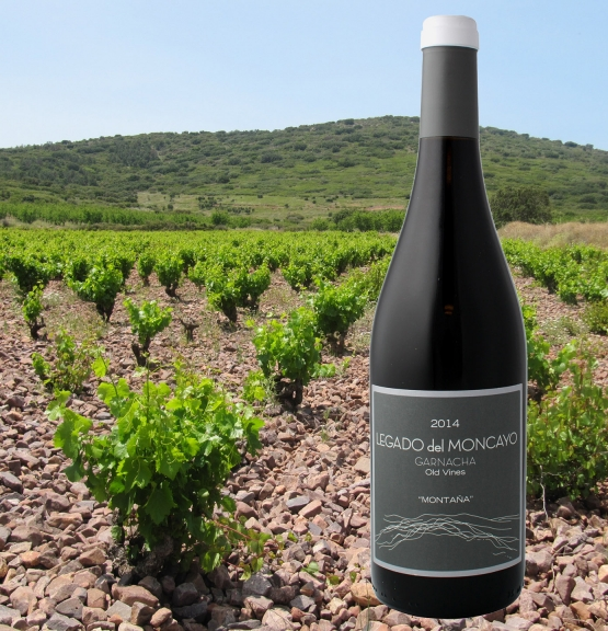Ukens vin: Gamle garnachastokker