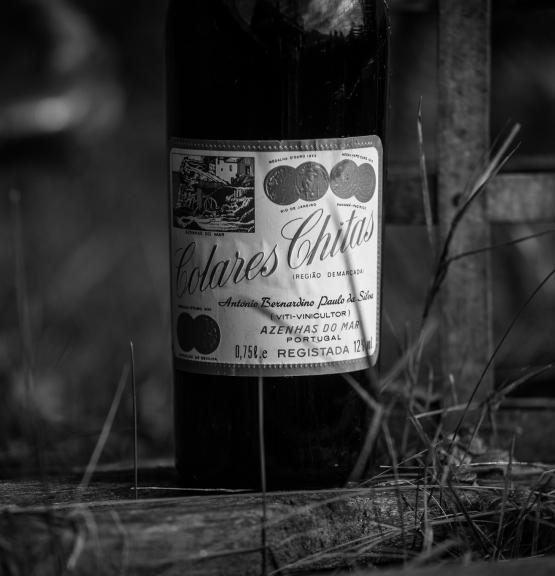 Ukens vin: Konservativ Colares