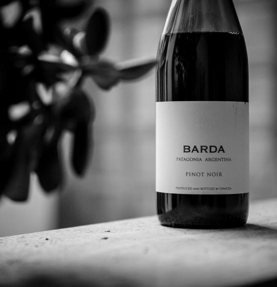 Ukens vin: Pinot fra Patagonia