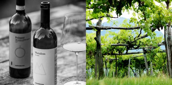 Ukens vin: Val d'Ossolas redning