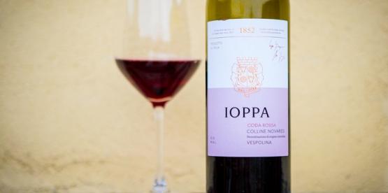 Ukens vin: Vespolina